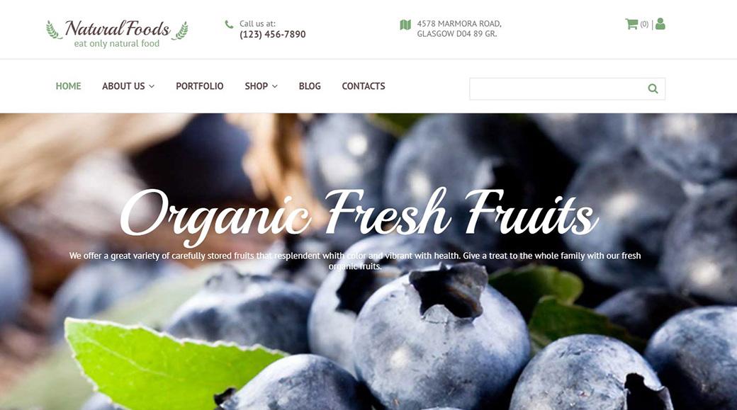 Natural Foods Ecommerce Website Template image