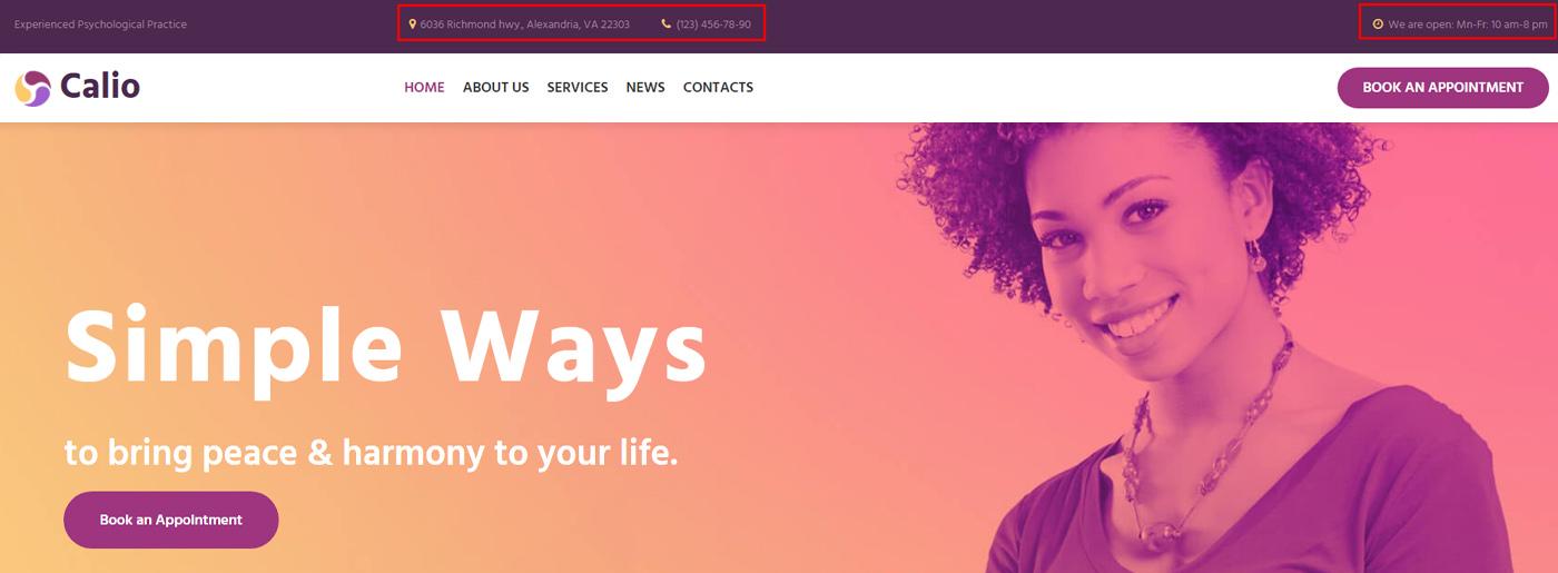 Medical Website Design Header