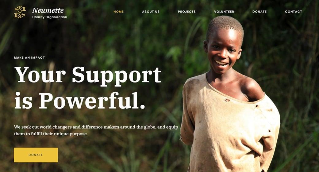 Neumette Responsive Homepage-Vorlage fur Spenden