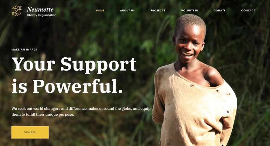 шаблон сайта волонтерства