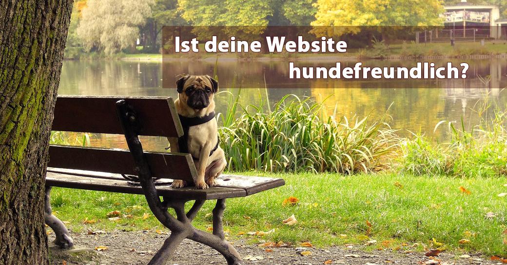 hunde website beitragsbild
