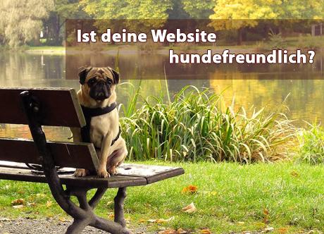 Hunde Website: Mit dem Tiergeschäft online gehen