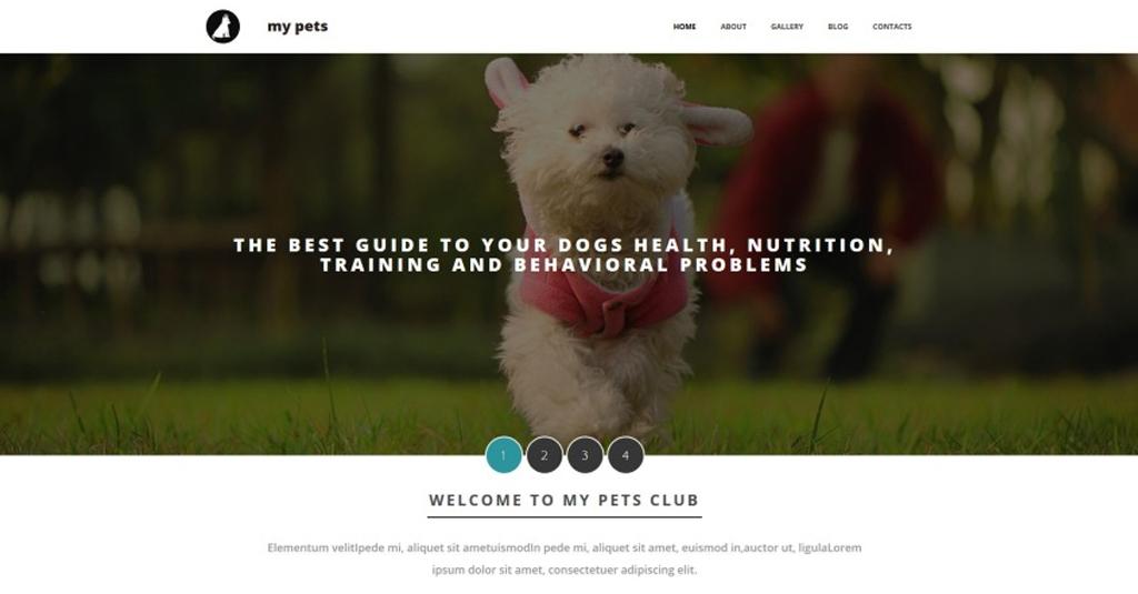 website vorlage hundeverein