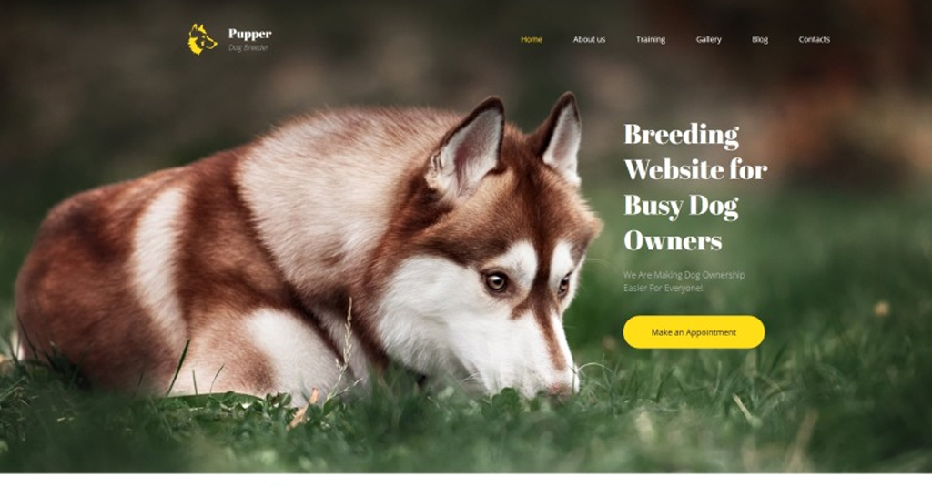 website template hundeclub