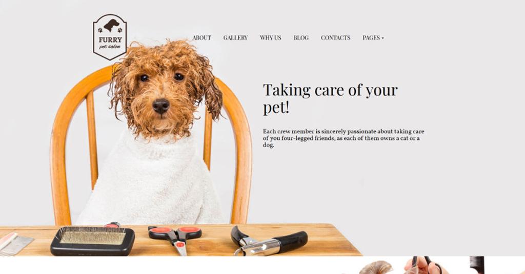 hundefriseur website template