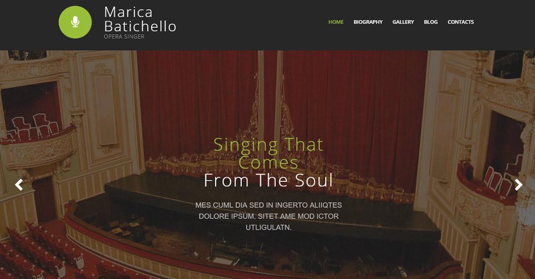 künstler portfolio website template für einen sänger