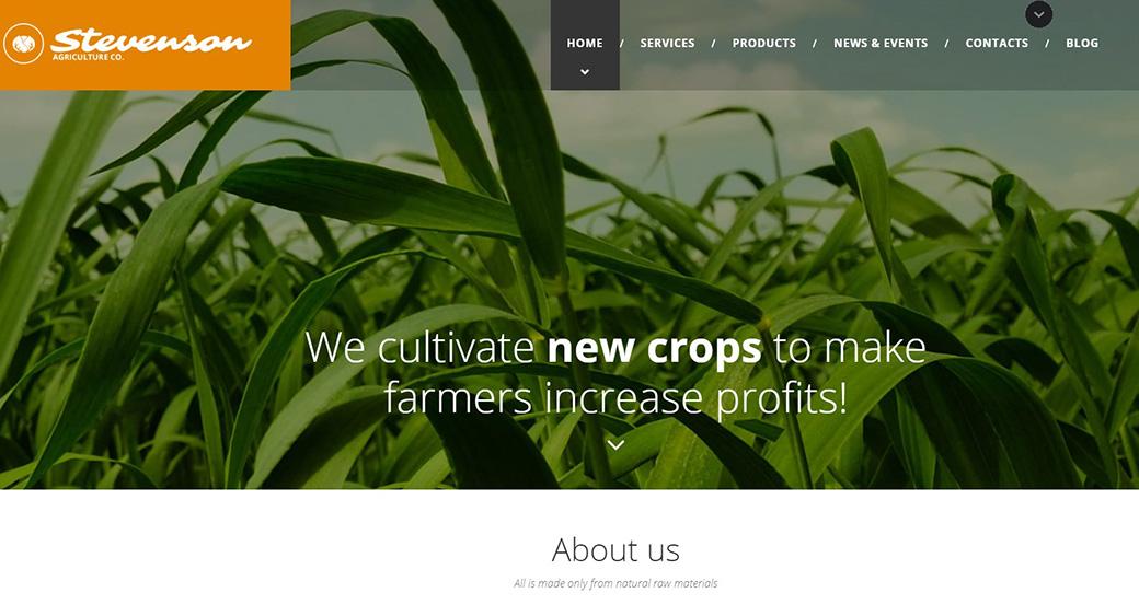 Шаблон для сайта агрокультурного предприятия изображение