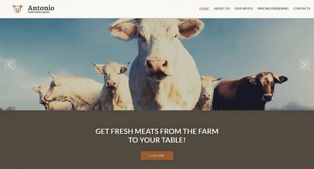 Шаблон для сайта фирмы, занимающейся продажей мяса изображение