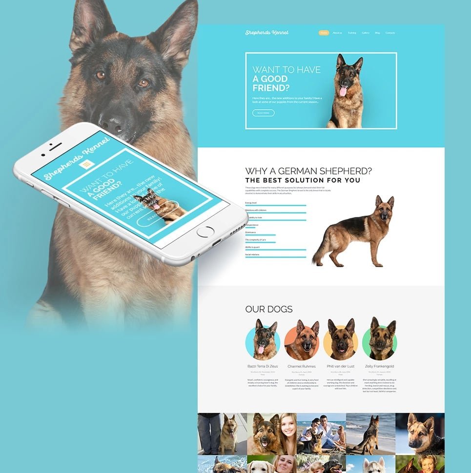 How to make a pet website - kernel