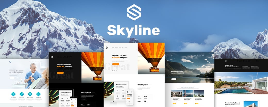 Skyline Business Website Design - main image