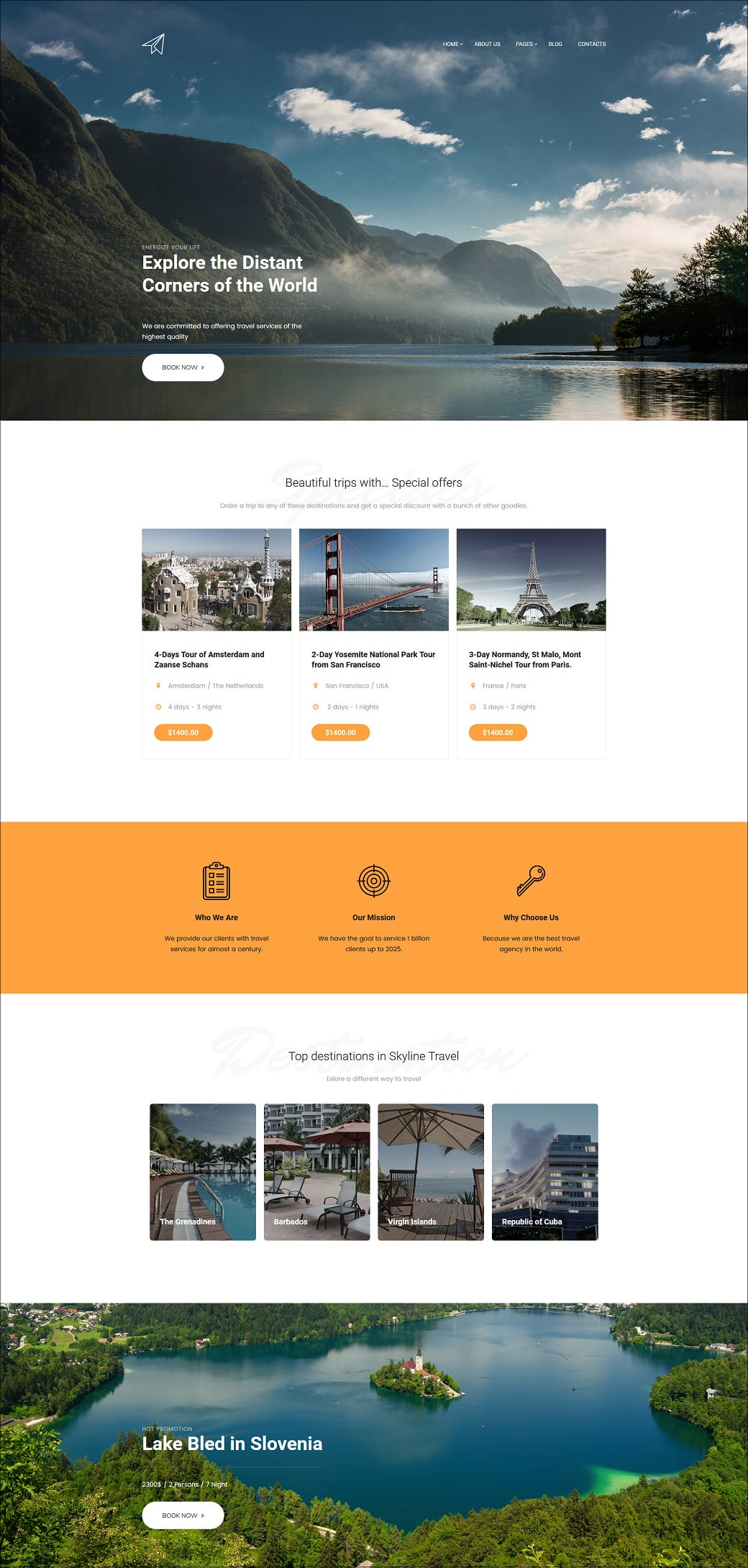Skyline Business Website Design - Travel Extra Home Page