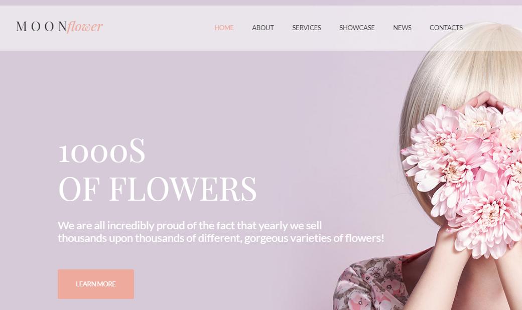 farbliche Webseitengestaltung