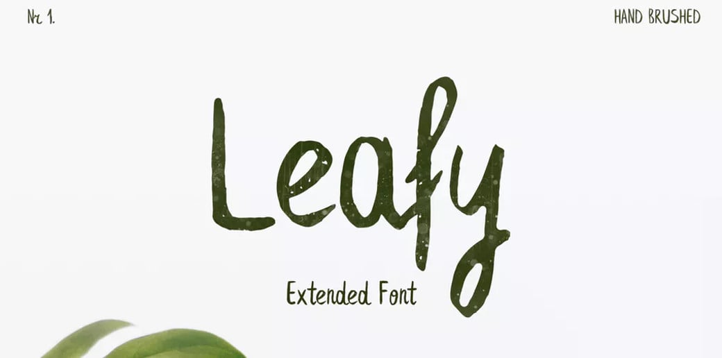 bold typography image Leafy Extended Brush Font
