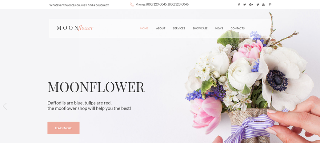MoonFlower HTML Website Template with trendy colors