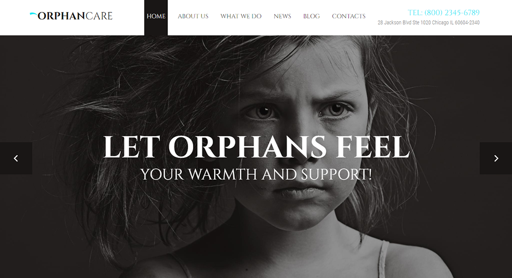 orphans charity website template