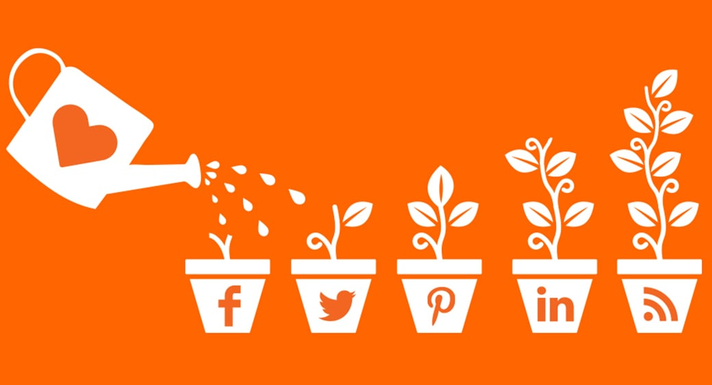 Social Media Management growth image