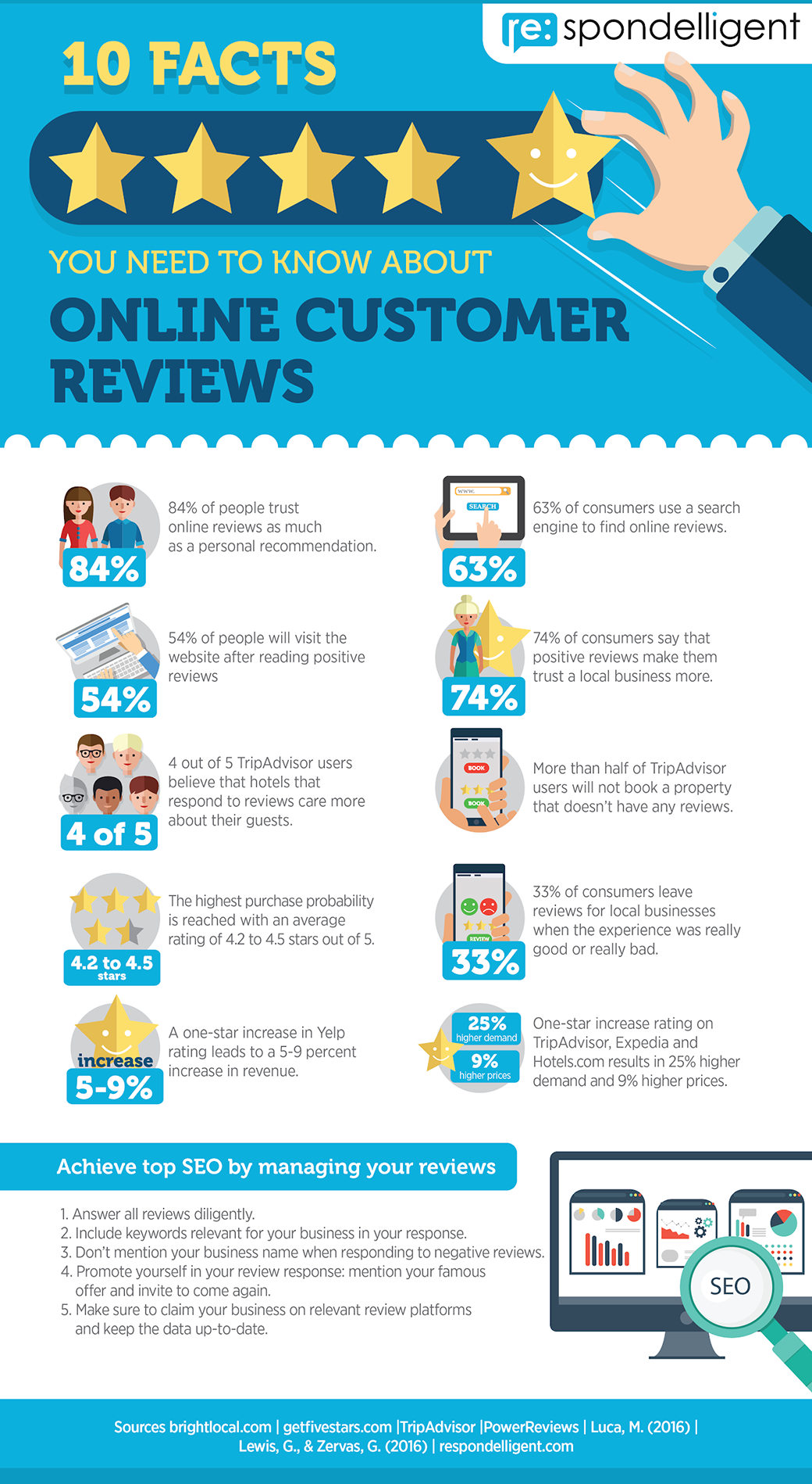 local search engine optimization infographics