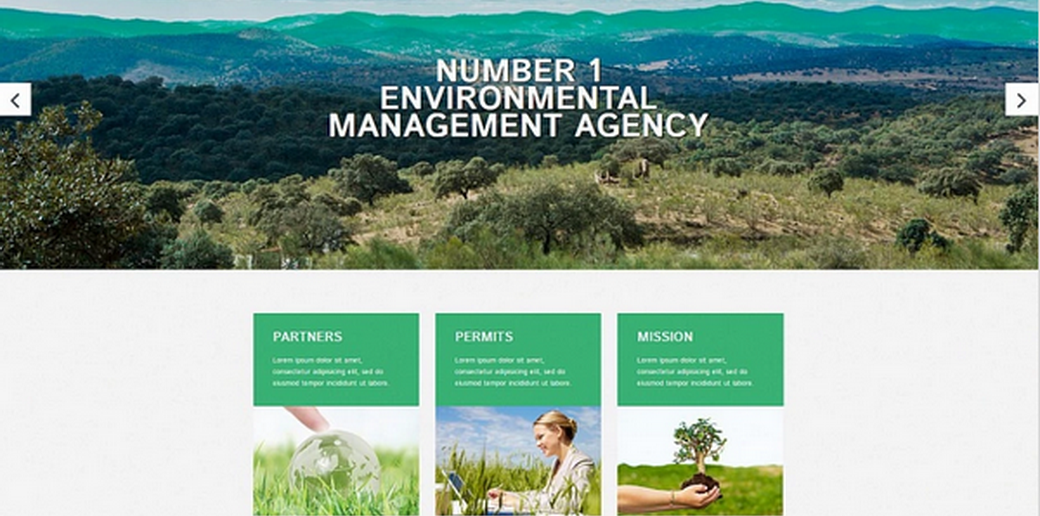 image of a renewable energy website