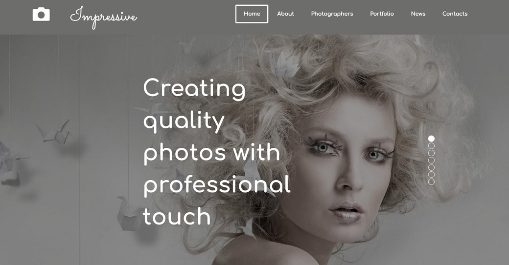Model Portfolio Website Template with Galleries