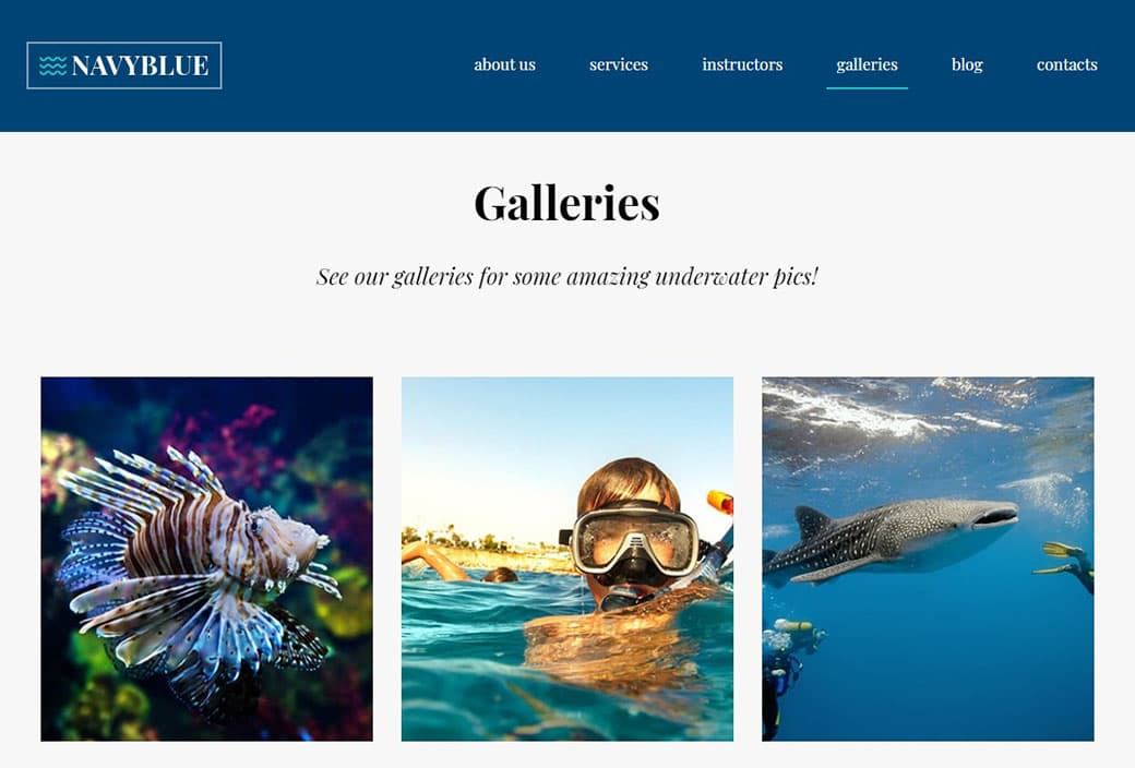 skuba diving website gallery