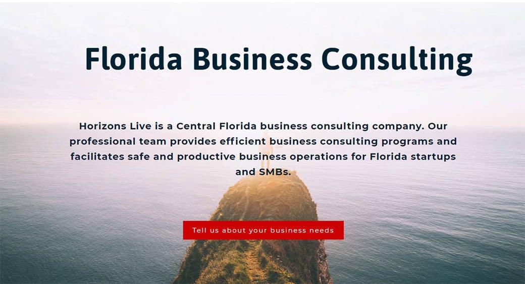 horizons live Florida web design company