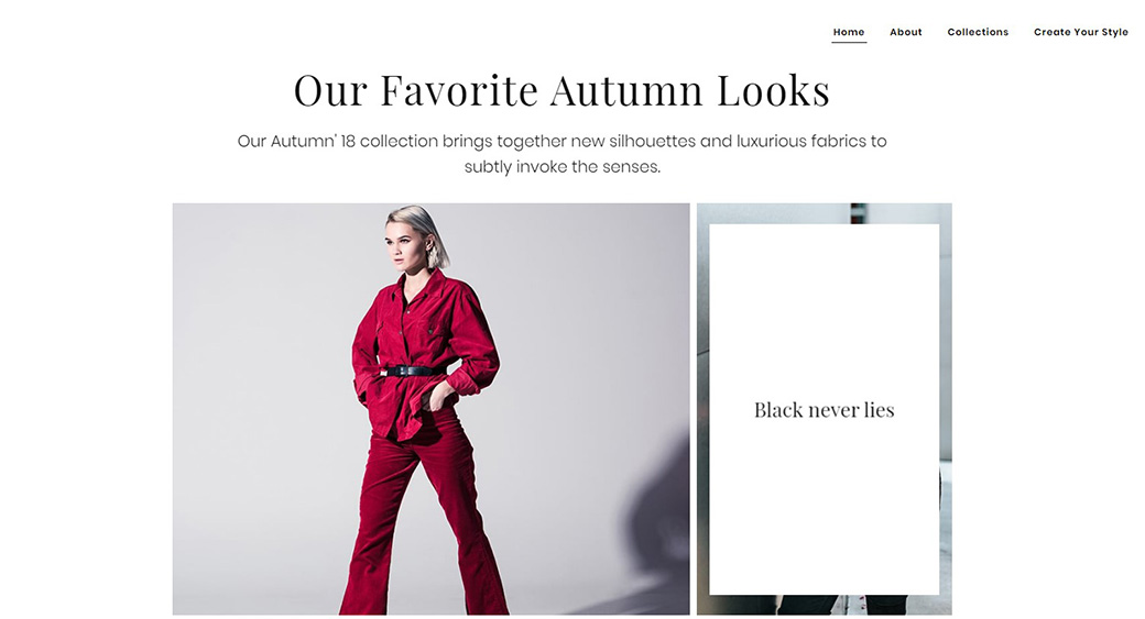 website accessibility guidelines - fashion site example