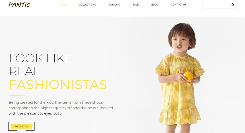 pantic website template homepage