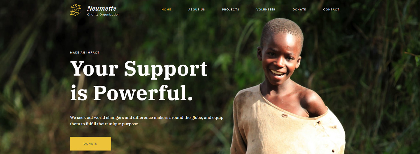 NGO Website Template for Charity Organizations