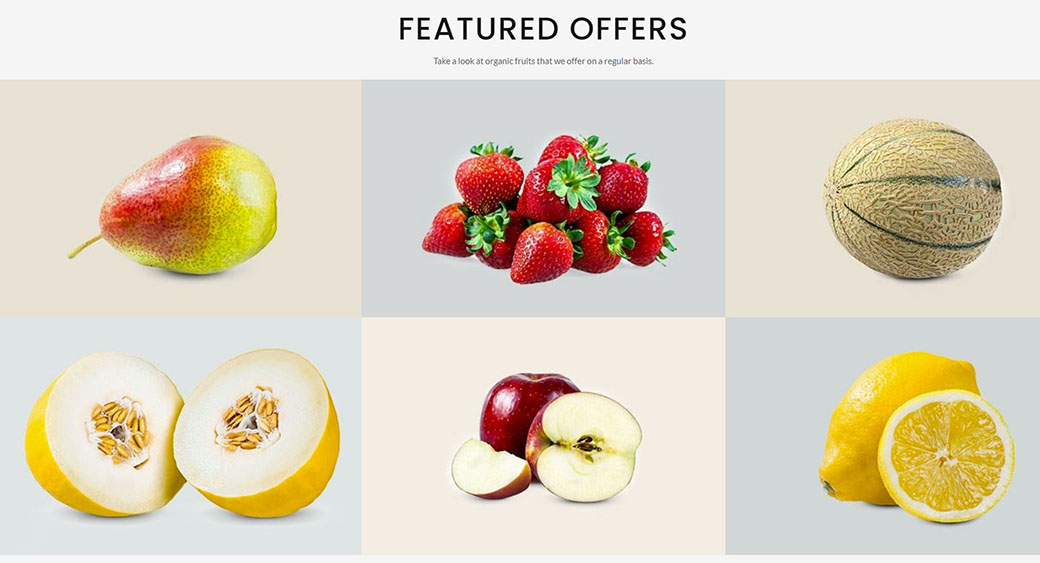 how to create a restaurant website with appetizing fruit photos