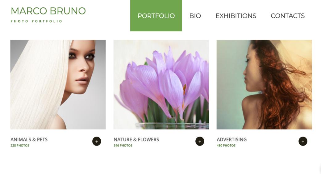 create portfolio for your site