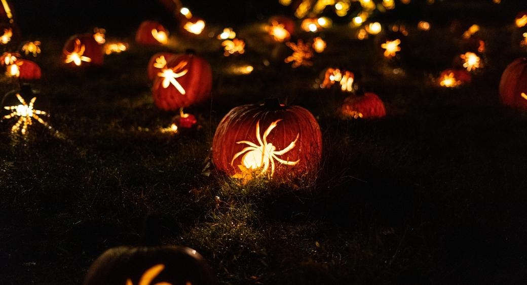 halloween web templates